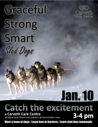 Sled dogs to visit Carveth Care Centre
